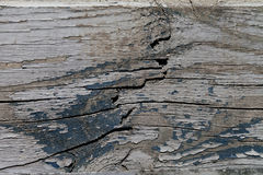Old wood texture with paint Royalty Free Stock Photography