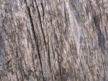 Old wood texture. Simple background Stock Photography