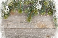 Old wood texture with snow and firtree Stock Image