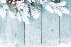 Old wood texture with snow and firtree Royalty Free Stock Image