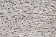 Old wood texture with splits. For background Royalty Free Stock Photos