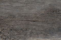 Old wood texture,wood. Old wood texture, wood background gray color Stock Image