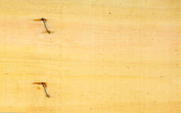 Old wood texture wooden wall background with nails Stock Photo