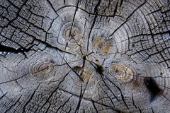 Old wood textured background stock photos