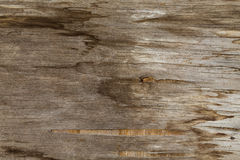Old wood textured background. Old stained wood textured background Stock Images