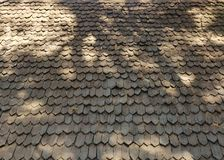 Old wood textured tiled roof background. With tree shadow Stock Photos