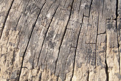 Old wood textures background Stock Photo