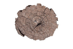 Old wood timber cut tecture background Stock Photo