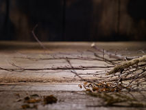 Old Wood with twigs Stock Images