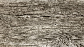 Old wood twxture Stock Image