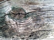 Old wood wall floor background texture Stock Photo