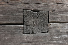 The old wood wall. Stock Photography