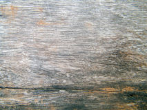 Old wood wall. Texture, wood wall background Stock Image