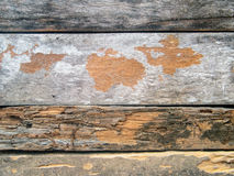 Old wood wall. Old wood wall texture, wood wall background Royalty Free Stock Photo