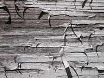 Old wood-wall Royalty Free Stock Photography