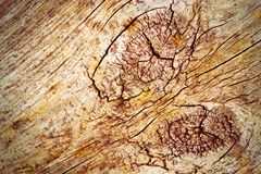 Old wood washed out Royalty Free Stock Photo