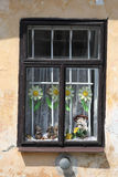 Old wood window. Decoration home wall flower Royalty Free Stock Photos