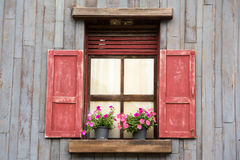 Old wood window with flower Stock Image