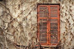 Old wood window with shutters closed Royalty Free Stock Images