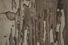 Old wood worn Stock Image