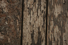 Old wood worn Stock Images