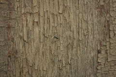 Old wood worn Royalty Free Stock Images