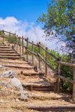 Old wooded ladder on the mountainside. Ladder is a structural element for vertical connection, consists of a series of steps for lifting to the top or downward stock photo