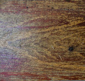 Old wooded teak close-up grungly textured Stock Photography