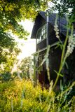 Old wooden abandoned building in nature stock photography