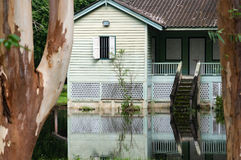 Old wooden abandoned house in a jungle with flooded from the lak Stock Images
