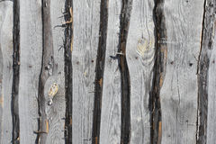 Old  wooden background with boards Stock Photography