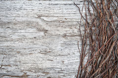 Old wooden background with dry branches Stock Image