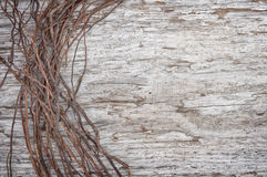 Old wooden background with dry branches Stock Images