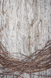 Old wooden background with dry branches Stock Photos