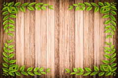 Old wooden background with green floral frame Stock Images