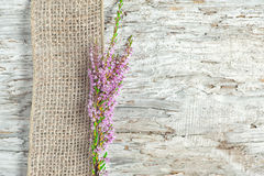 Old wooden background with heather and sacking ribbon royalty free stock image