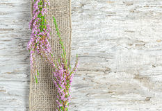Old wooden background with heather and sacking ribbon Stock Photos