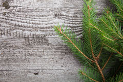 Old wooden background with pine branch, image of flooring board Royalty Free Stock Image