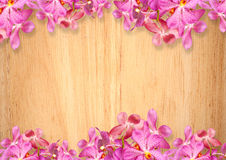 Old wooden background with pink Orchid flowers Royalty Free Stock Photos