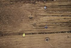 Old wooden background texture on a house. Sand and dirt background texture royalty free stock photos