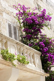 Old wooden balcony with flowers. A romantic old balcony in the Mediterranean with purple and pink bougainvilla climping on the railing Stock Image