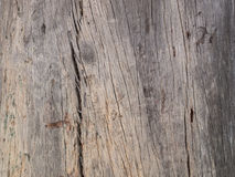 Old wooden bark Royalty Free Stock Photo