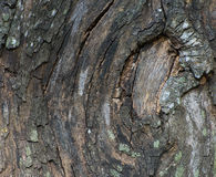 Old wooden bark Royalty Free Stock Photography