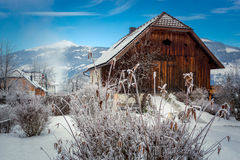 Old wooden barn in Austrian Alps covered by snow Royalty Free Stock Image
