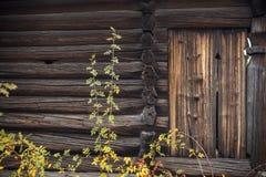 Old wooden barn door. Stock Photos