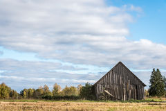 Old wooden barn. In the field Royalty Free Stock Photo