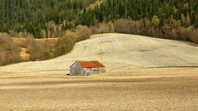 Old wooden  barn in the middle of the field Stock Image