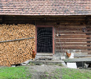 Old wooden barn with stack of firewood Stock Photo
