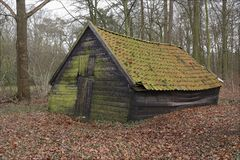 Old wooden barn in the forest. An old wooden barn standing in a forest. Take a look just how crooked this barn is Royalty Free Stock Photography