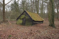 Old wooden barn in the forest. An old wooden barn standing in a forest. Take a look just how crooked this barn is Royalty Free Stock Photo